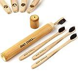 dear roots - Nachhaltige Bambus Zahnbürsten mit Etui - 4er Set Holzzahnbürste - 100% Vegan und BPA Frei - Mittelweiche Zahnbürste aus Holz mit Aktivkohle für weissere Zähne, Reisezahnbürste