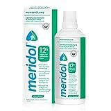 meridol Mundspülung Zahnfleischschutz & Frischer Atem, 400ml - 12 Std. Schutz vor schlechtem Atem, ohne Alkohol