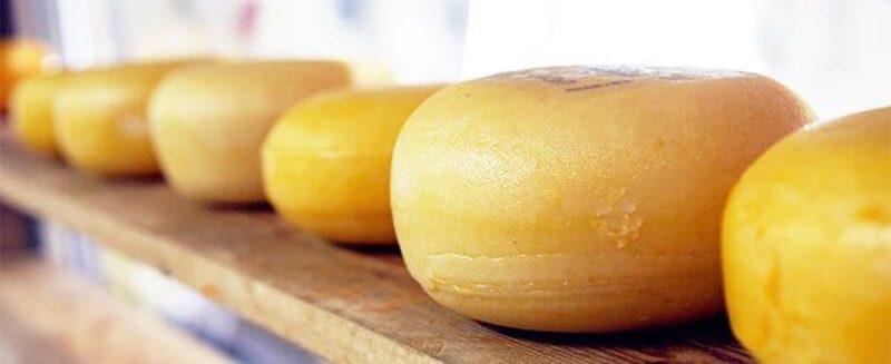 käse neutralisiert säuren